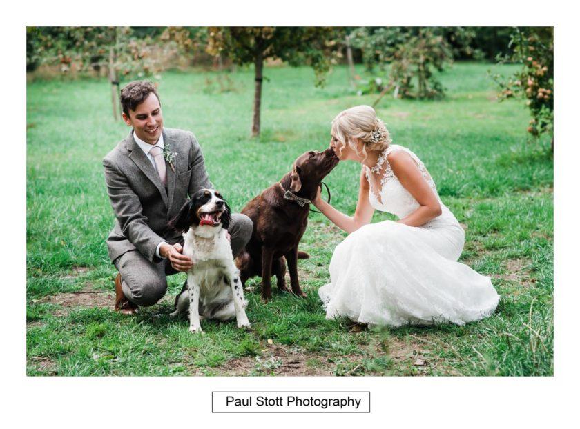 bride groom dogs 002 - Crow Farm - Gemma and Phil