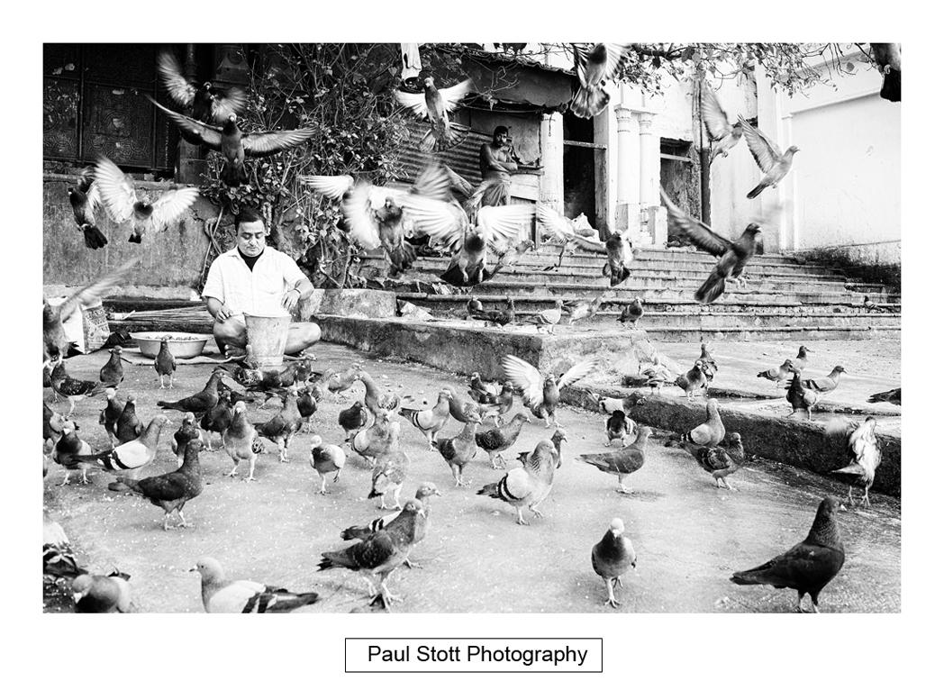 Kolkata travel photography 019 - Kolkata 2018 - 5 days of Street Photography