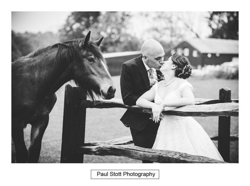 Wedding Photography Taylors Farm | Horse approaches the wedding couple